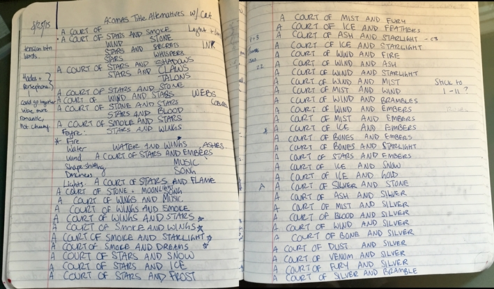Sarah's_Notebook_-_ACOMAF_Names-horz
